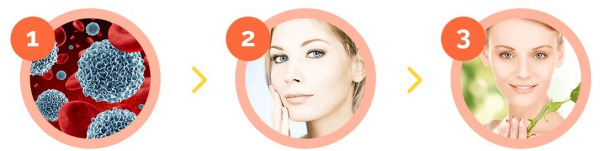 face cream, anti wrinkles