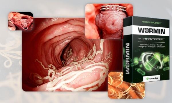 wormin anti-parasite capsules