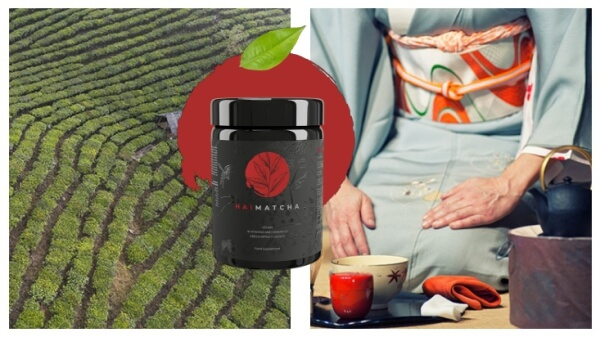 Hai Matcha powder price official website